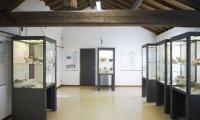 (3011) - Il La cultura del territorio - Museo della terramara Santa Rosa di Poviglio